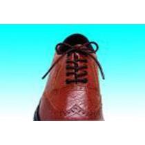 "Essential Everyday Essentials Elastic Shoelace 24"" Brown - 3 Pair"